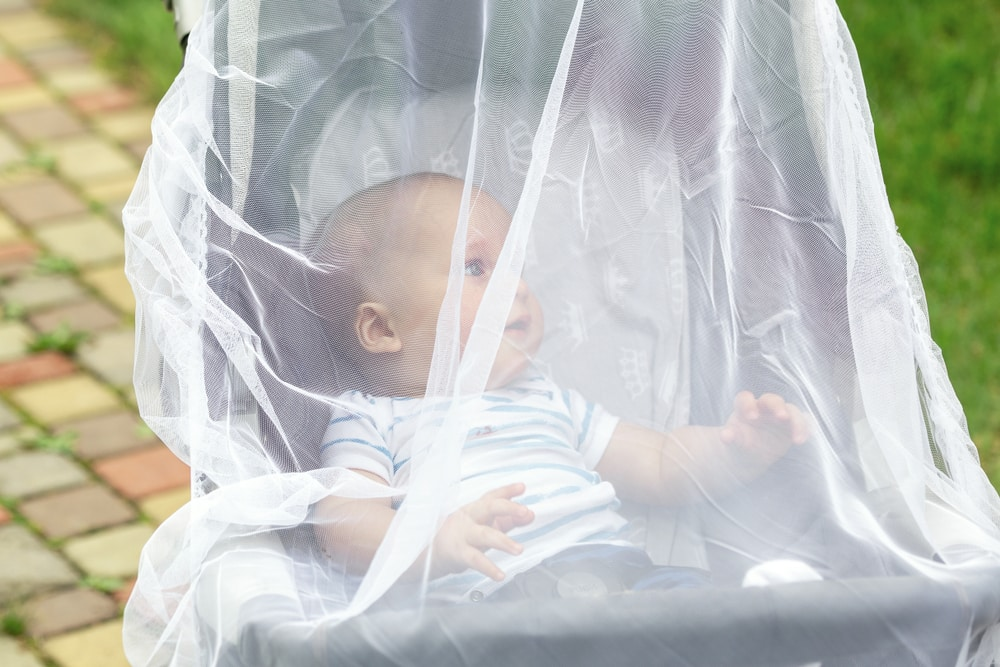 Child sitting in a stroller with an impregnated mosquito net